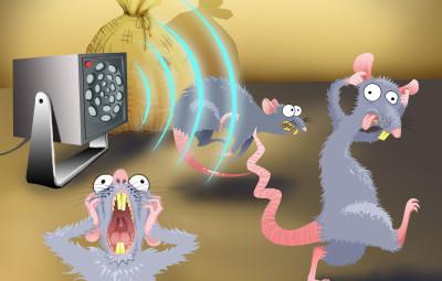 Защитите своё хозяйство: как ультразвуковые отпугиватели мышей могут пригодиться дачникам и садоводам