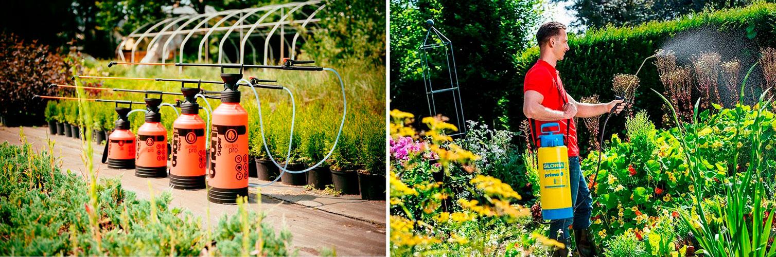 Садовый опрыскиватель ручной — лучшее решение в борьбе с вредителями и сорняками