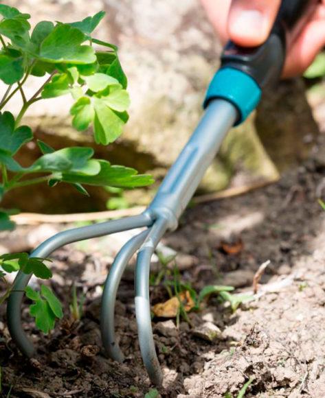 Ручной культиватор - 115 фото помощника при обработке земли